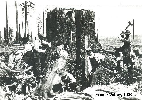 logging - 1920 u0026 39 s