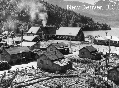 the japanese canadians of the relocation camps Japanese-american internment camp: tule lake, california  nearly 23,000 nikkei, or canadians of japanese descent, were sent to camps in british columbia it was.