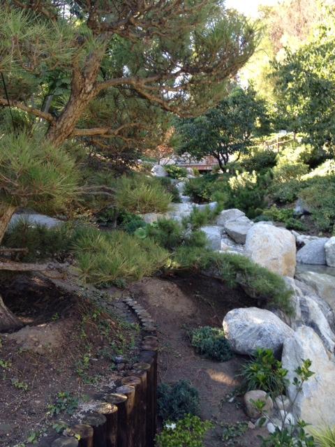 Revisiting balboa park japanese friendship garden for Koi garden rio di pusteria